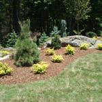 Landscaping Morganton NC